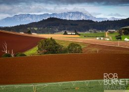 Farm in Tasmania - image by Rob Burnett Images